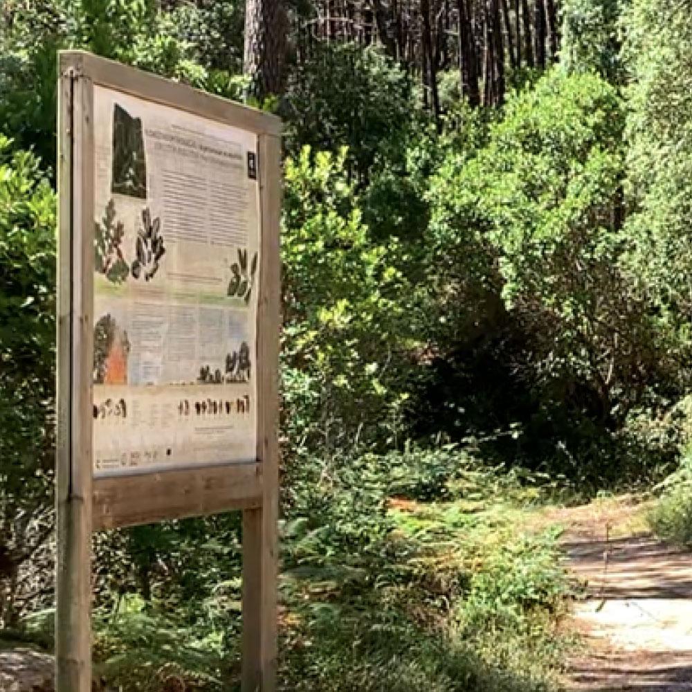 monserrate-eco-trail-2