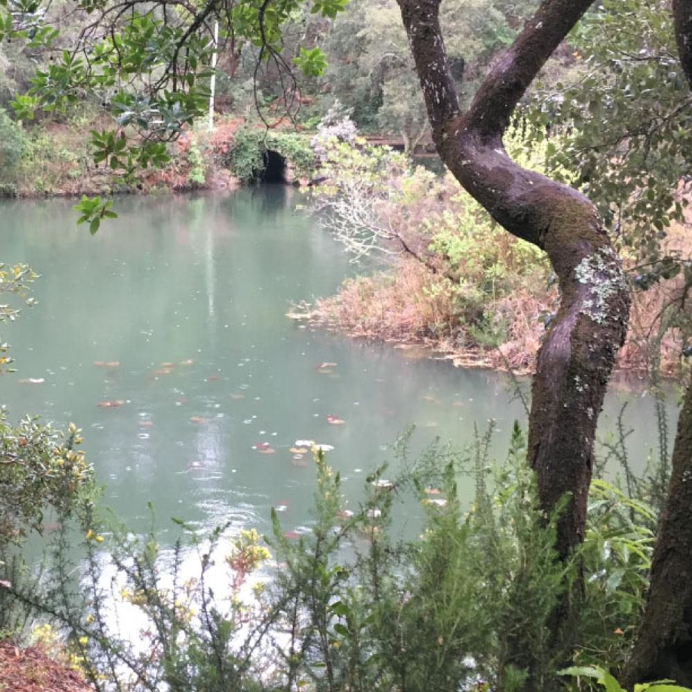 monserrate-eco-trail-3